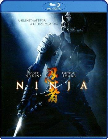 Ninja (2009) Dual Audio Hindi 720p BluRay 700MB ESubs Movie Download