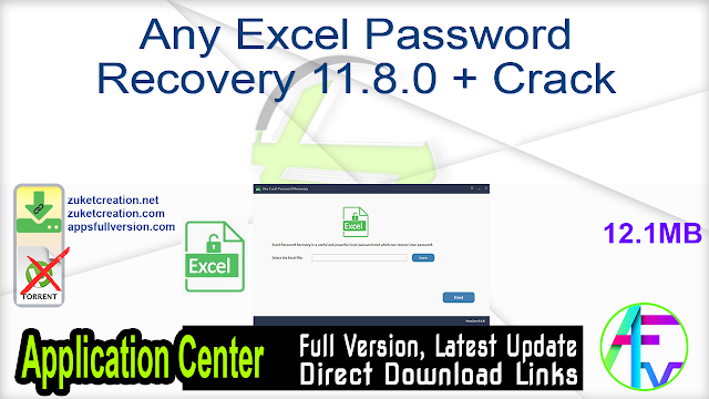 Any Excel Password Recovery 11.8.0 + Crack