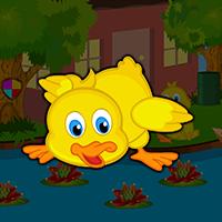 Play AvmGames Cute Duckling Bird Escape