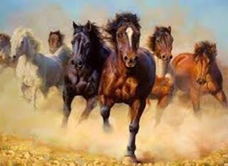 Il saggio contadino cinese e il vecchio cavallo