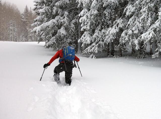All of the Utah snow