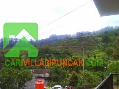 Pemandangan Villa