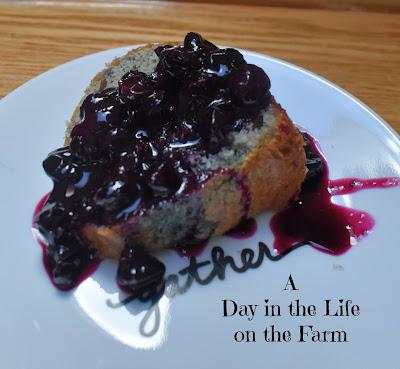 Melted Blueberry Ice Cream Cake