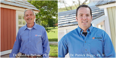 My discussions with Dr. Ballam, Dr. Biggs and Dr. McKillop confirmed two clear points: poultry nutrition is very complicated and laying hens are extremely sensitive to what they are fed.
