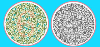 Apart from color, are these two images identical?
