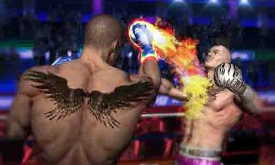 Punch Boxing 3D v1.1.1 Mod APK 3