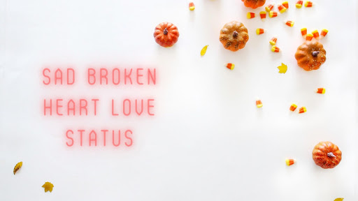 Sad Broken Heart Love Status