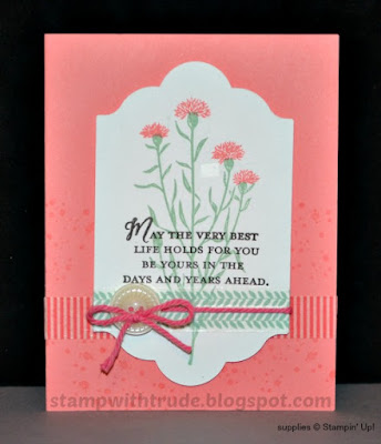 Awesomely Artistic, Wild About Flowers, Retirement card, Stampin' Up!, Trude Thoman, Stamp with Trude