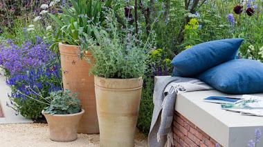 The Wedgwood Garden, inspiración en azul cielo, verde y carmesí
