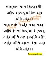 https://www.suronuragi.com/2021/05/jagorane-jay-bibhabori-lyrics.html