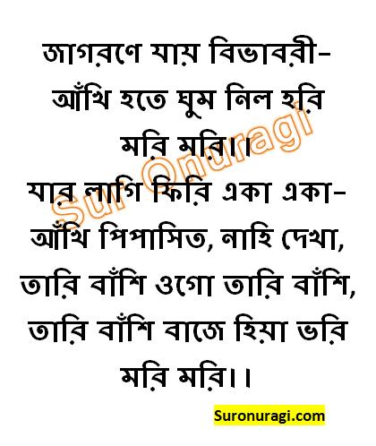 Jagorane Jay Bibhabori Rabindra Sangeet Lyrics (জাগরণে যায় বিভাবরী)