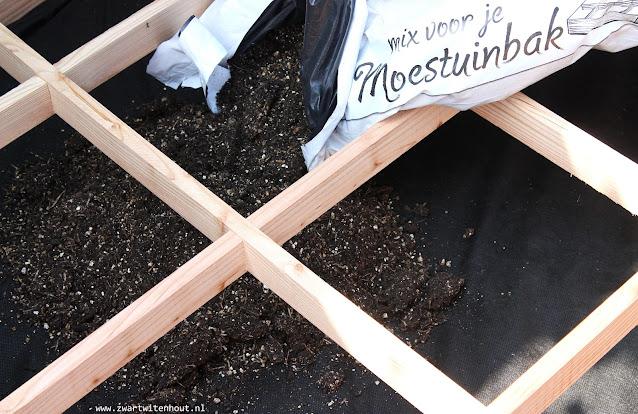 Groente uit eigen tuin! Makkelijke moestuin tips!
