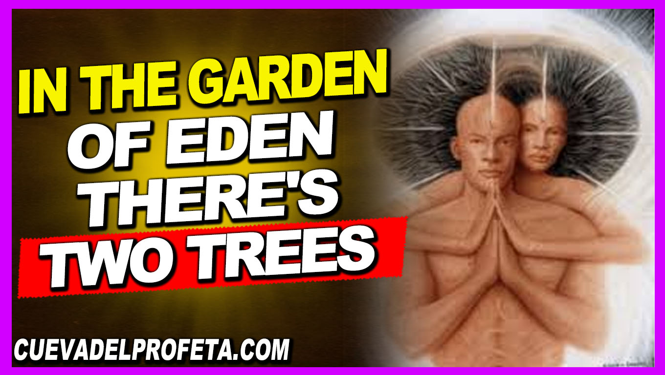 In the garden of Eden there's two trees - William Marrion Branham