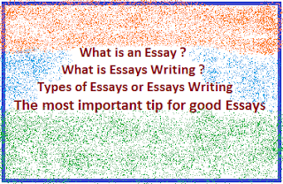 Essay Writing : Essay Writers, Types, Tips