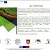 Διαδικτυακή εκδήλωση   για τις προοπτικές της ελαιοκαλλιέργειας στην Ελλάδα