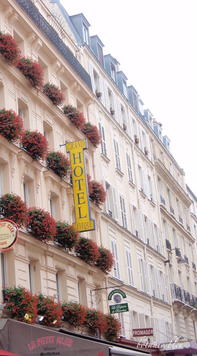 paris-hotel-red-geranium-windowboxes