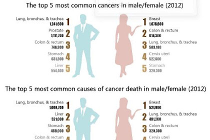 Thats the 4 Lifestyle Causes Most cancers