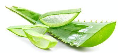 Nourishing Gel For Aloe Vera Plant Leaves