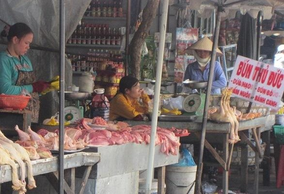 Giá thịt lợn tăng kỷ lục là do các lò mổ làm giá hay bán sang TQ đang thiếu hụt trầm trọng?