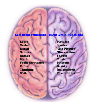 https://i2.wp.com/1.bp.blogspot.com/-HsM0PjKTq5k/TfM502bz9UI/AAAAAAAAAPY/l-TDyE2f68o/s1600/Brain+Functions.png