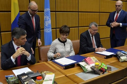 ONU y Colombia firman acuerdos para reducir cultivo de coca