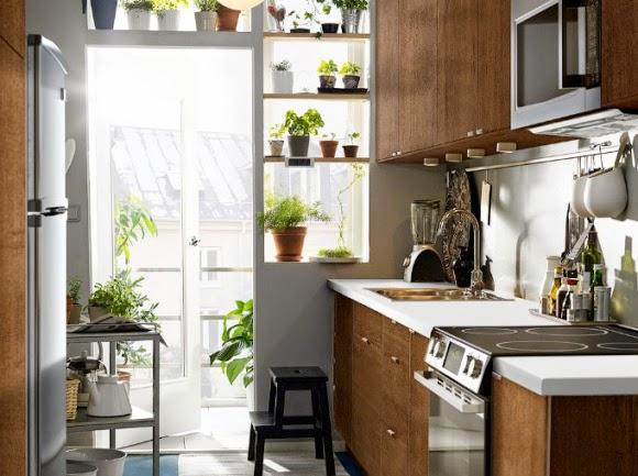 Mulailah Dengan Meletakan Dapur Pada Bagian Tengah Atau Bahkan Depan Rumah Anda Hal Ini Bisa Memberikan Sedikit Efek Paksaan Agar Mau