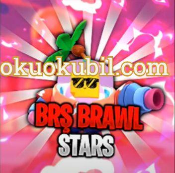 Brawl Stars  Brawl Pass Alma Yöntem Uygulaması Ve Puan Kasma 2020