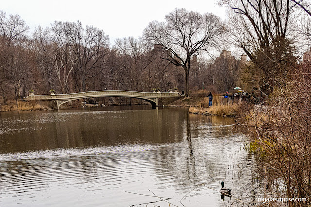 Patos no lago do Central Park e a Bow Bridge, Nova York