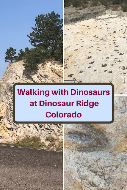 Exploring dinosaur fossils and geologic formations at Dinosaur Ridge in Morrison, Colorado near Denver with views of Denver Basin and Red Rocks