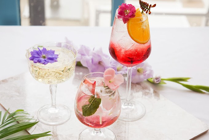 Eight Cocktail Instagram Accounts to Follow