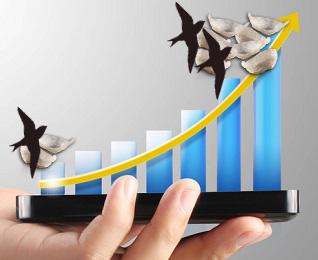 Upaya Peningkatan Produksi Sarang Walet