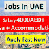 Dubai Jobs With Visa | Salary 6000AED | Jobs In UAE 2019 |