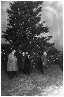 Electric Christmas Lights For The Christmas Tree