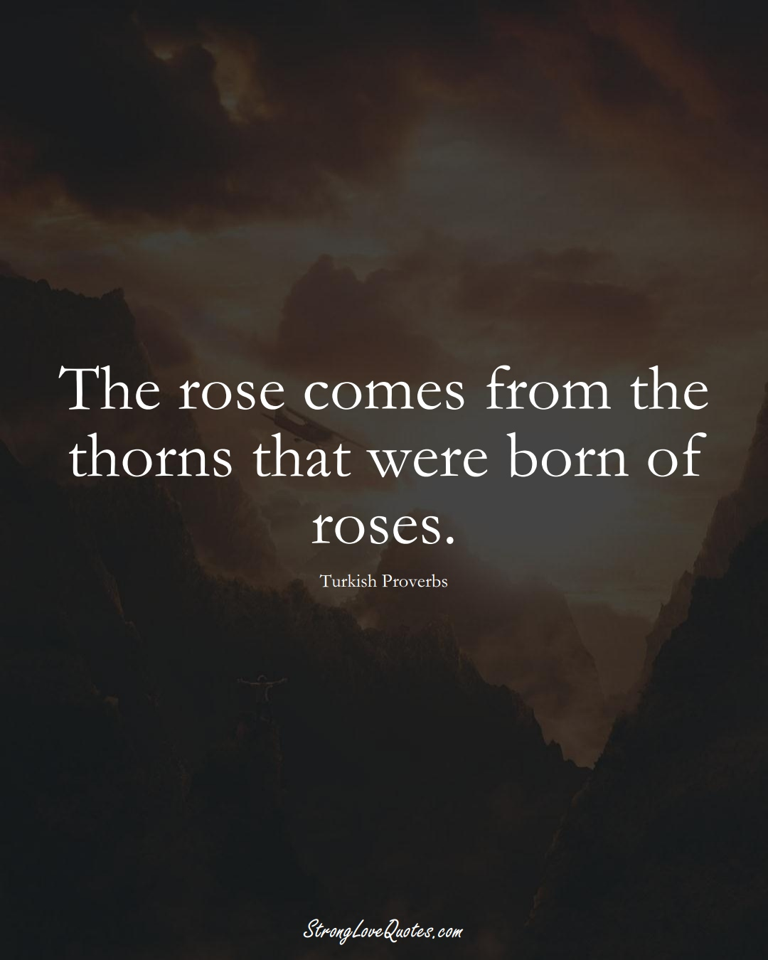 The rose comes from the thorns that were born of roses. (Turkish Sayings);  #MiddleEasternSayings
