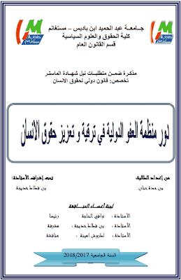 مذكرة ماستر: دور منظمة العفو الدولية في ترقية وتعزيز حقوق الإنسان PDF