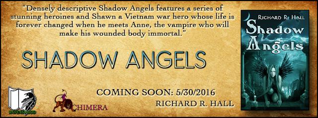 http://ravenswoodpublishing.blogspot.com/p/shadow-angels-by-richard-r-hall-virtual.html
