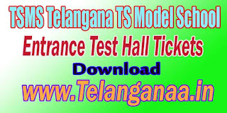 TSMS Telangana TS Model School 9th Class Entrance Test Hall Tickets Download