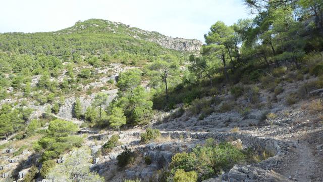 Camins de pedra seca