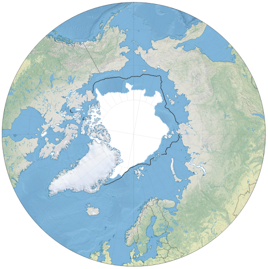 Mapping the Arctic sea ice