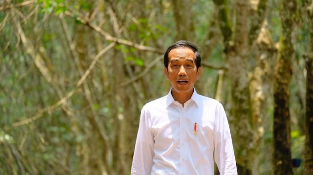 Baju Kesukaan Presiden Jokowi