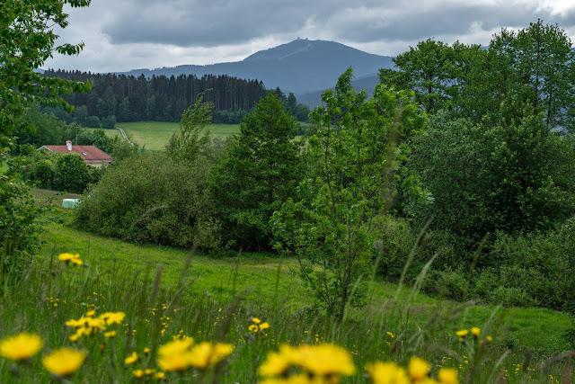 Künischer Grenzweg auf den Osser | Wanderweg La1 im Lamer Winkel | Wandern im Bayerischen Wald | Naturpark Oberer Bayerischer Wald 18