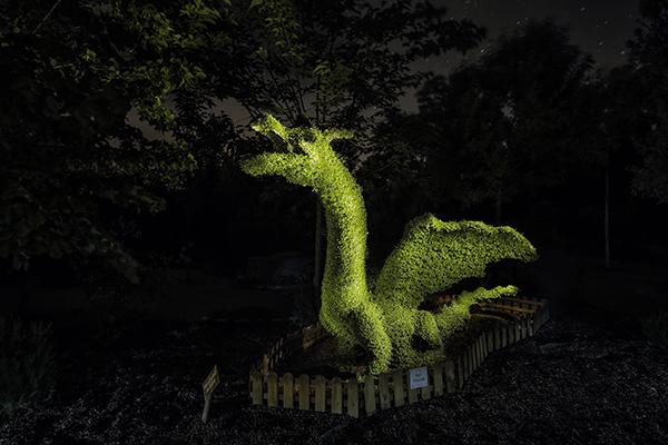 parque_nocturno