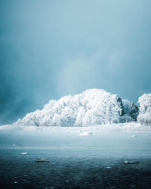 Lahemaa National Park Estonia 5