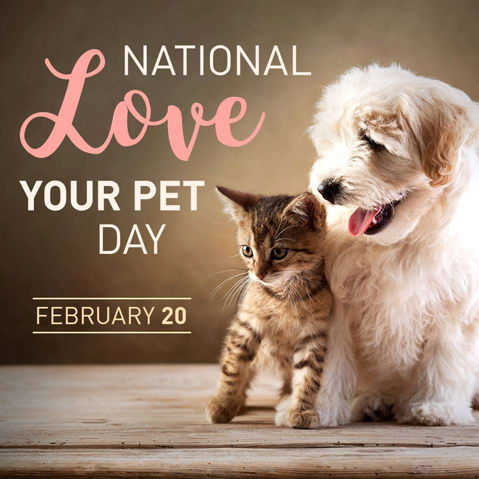 National Love Your Pet Day Wishes
