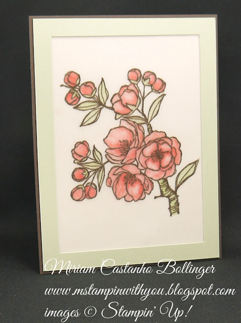 Miriam Castanho-Bollinger, #mstampinwithyou, stampin up, demonstrator, pp, all occasions card, indescribable gift stamp set, heat embossing, su