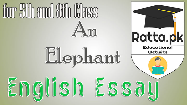 An Elephant English Essay for 5th and 8th Class