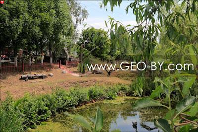 Агроусадьба и буддийский храм ''Яблоня Инго''. Прудик