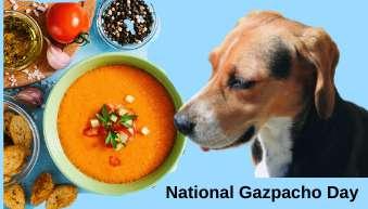 National Gazpacho Day Wishes for Instagram