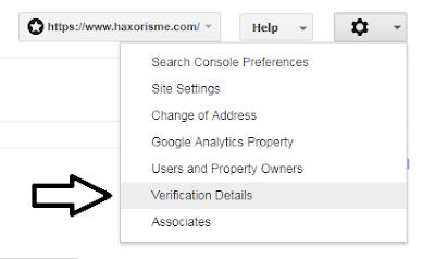 Detail Verifikasi Webmaster