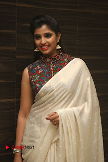Actress Syamala Pictures in Saree at Hyper Movie Trailer Launch  0057
